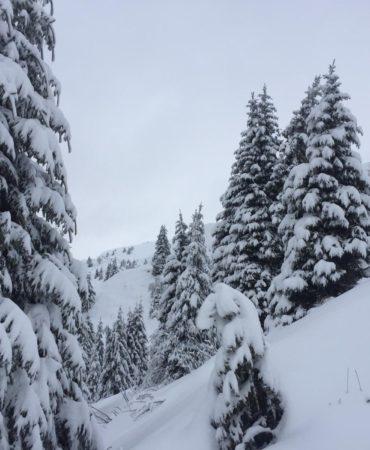 azienda agricola montagna vacanza neve